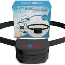 Collar Usado Canino Inteligente Adiestramiento Training Pet _1